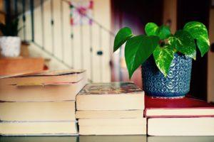 boeken en plant